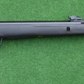 GAMO Big Cat 1000E